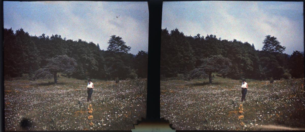 Forêt de Lente: Fernande dans une prairie Photographie 13 juillet 1925