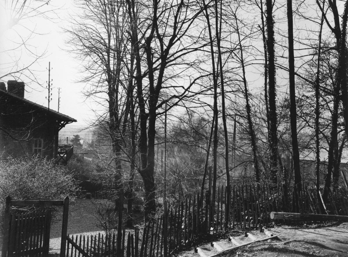 Parc de la maison Bergès Photographie