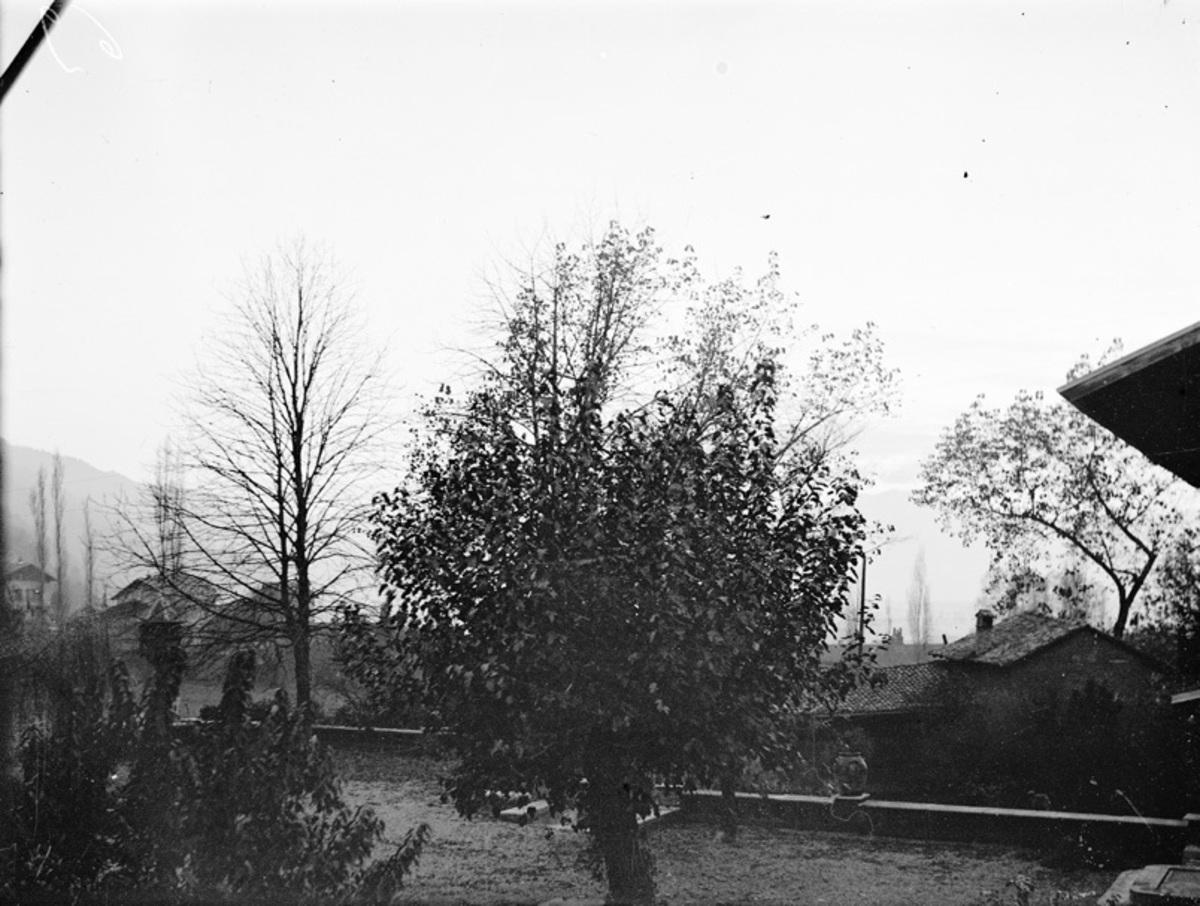 Jardin, grande terrasse de la maison Bergès Photographie